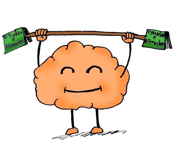 Como seu cérebro aprende?