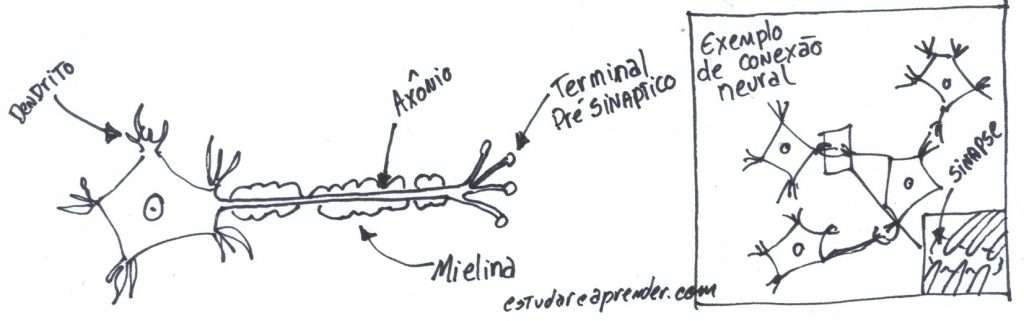 conexoes-neurais